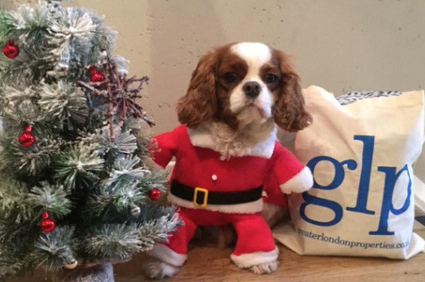 Glp Christmas, Greater London Properties